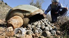 Streubomben zählen zu den gefährlichsten Waffenarten der Welt: sie enthalten eine Vielzahl kleinerer Bomben, die sich in der Luft über einer riesigen Fläche ausbreiten.