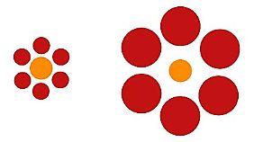 Die beiden orangefarbenen Kreise sind gleich groß.