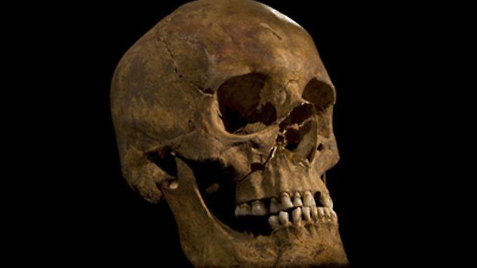 Der Schädel eines Königs: Richard III.