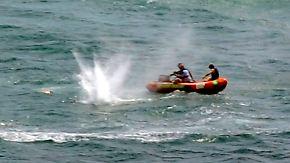 Drama an Neuseelands Küste: Hai tötet Schwimmer