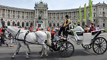 Wien knickt ein: Österreich lockert Bankgeheimnis