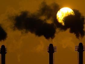 Der Kohlendioxidgehalt in der Luft muss dringend reduziert werden.