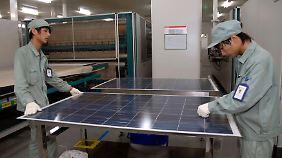Händler fürchten um Nachfrage: Solar-Strafzölle stoßen auf heftige Kritik