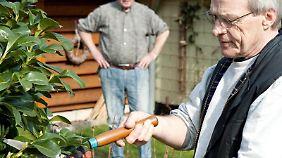 Mit einer Heckenschere an den Rhododendronstrauch des Nachbarn? Zwar dürfen Pflanzen nicht über den Gartenzaun wachsen. Gestutzt werden dürfen sie aber nicht ohne weiteres.