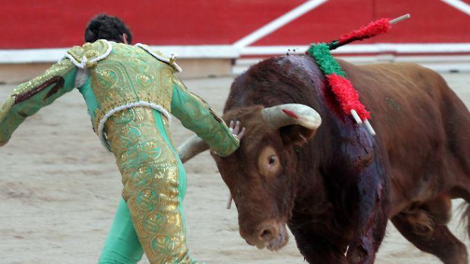 Trotz seiner Brutalität hat der Stierkampf in Spanien Tradition.