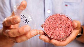 Frikadelle aus Stammzellen: Kunstfleisch im Reagenzglas gezüchtet