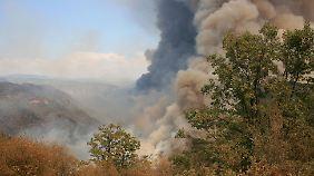 Riesige Rauchwolken über dem Yosemite-Park lassen das Ausmaß des Brandes erahnen.