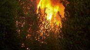 San Francisco ruft Notstand aus: Flammenmeer erreicht Yosemite Nationalpark