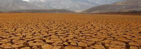 Noch in diesem Jahrhundert könnte sich die Erde um vier Grad erwärmen. Die Folgen wären dramatisch. Foto: Martin Alipaz/Illustration