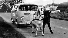 ... Pferde, die vor Autos gespannt sind, ...