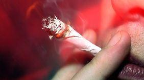 Strafverfolgung kostet Millionen: Juraprofessoren fordern Legalisierung von Cannabis