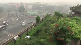 Begrünte Dächer: Pekinger kämpfen mit Gemüse gegen den Smog