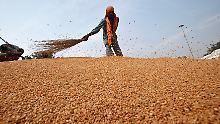 WTO-Verhandlungen stocken: Indien kämpft um sein Ernährungsprogramm