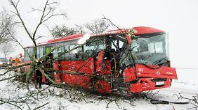 Dieser unbesetzte Bus kam bei Uelzen von der eisglatten Fahrbahn ab. Der Fahrer wurde leicht verletzt.