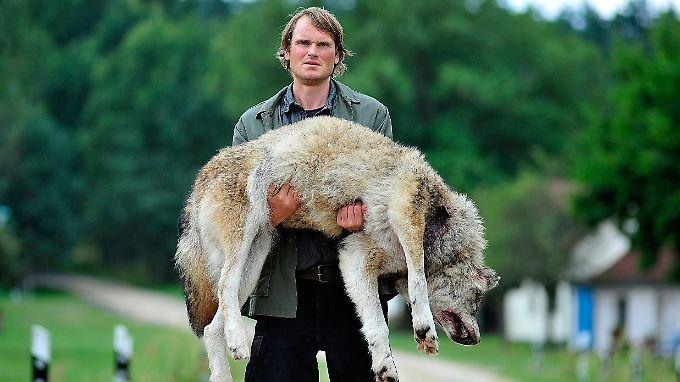 Der Täter und sein Opfer: Stephan Waldner (Fabian Hindrichs) trägt einen toten Wolf durch den Ort.