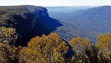 Irgendwo im australischen Bundesstaat New South Wales lebte die Inzest-Familie.