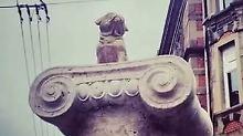 Obwohl der goldene Mops nicht zum Denkmal gehört, vermissen die Stuttgarter ihr Loriot-Wahrzeichen.