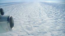 Der Pine-Island-Gletscher ist der am schnellsten fließende Gletscher der Antarktis. Im Juli 2013 löste sich aus dem Gletscher eine riesige Fläche Schelfeis.