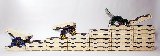Wie Termiten können Roboter komplexe Gebilde bauen - mit einfachen Mitteln.