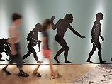 Wer hat recht - die Bibel oder Darwin?: Viele US-Bürger bezweifeln Evolutionstheorie