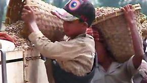Schwieriger Neuanfang in Myanmar: Kinder müssen Schwerstarbeit verrichten