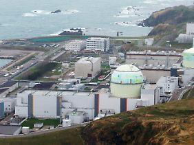 Hokkaido Electric ist der Versorger auf der dünn besiedelten Nordinsel: Die Kernkraftwerke des Konzerns stehen am Meer, da wo es Kühlwasser gibt - und leider auch Tsunamis.