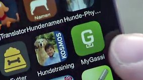 n-tv Ratgeber: Die besten Apps für Hundebesitzer
