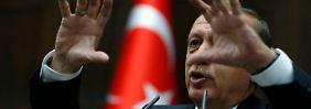 Erdogan spricht zu den Abgeordneten seiner AKP.