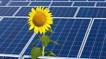 Wer über eine Beteiligung am Solarpark nachdenkt, sollte nur einen Teil seiner Ersparnisse investieren. Denn das Geld kann bei einer Insolvenz verloren gehen.