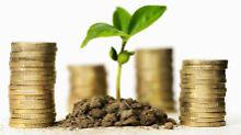 Anders investieren: Alternativen zu mageren Zinsen