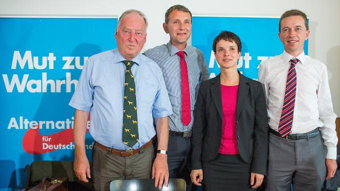 Auf zu neuen Ländern (v.l.): Alexander Gauland, Björn Höcke, Frauke Petry und Bernd Lucke.