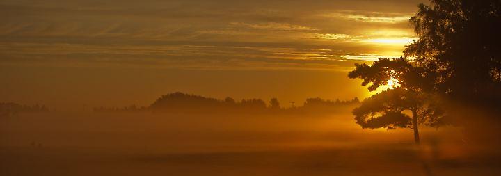 Mehr als ein Grauschleier über der Stadt: Nebel - die Wolke am Boden