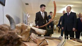 Putin besuchte ein Mammut-Museum in Jakutsk - und kritisierte die Regierung in Kiew sowie den Westen.