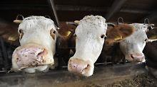Anthrax in der Wurst?: Behörden warnen vor Corned Beef