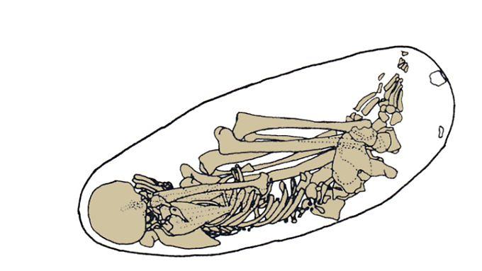 Zeichnung des Skeletts aus Kostenki.