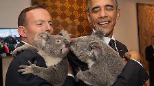 Nach einer kleinen Kusseinlage mit Tony Abbotts Schützling ...