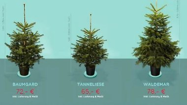"""Tanneliese oder lieber Waldemar?: Geliehener Weihnachtsbaum macht """"happy"""""""
