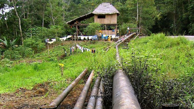 Eine Pipeline im Yasuní-Nationalpark: Kritikern zufolge ist die Technik veraltet und es mangelt an Transparenz.