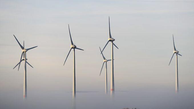Auch für schöne Fotos taugen Windräder.