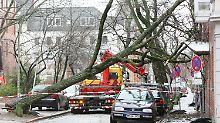 "Orkan-Alarm in Deutschland: ""Felix"" legt Bahnverkehr lahm"
