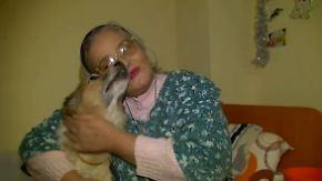 Neue Hoffnung für gejagte Tiere: Rumänische Straßenhunde begeistern Altersheimbewohner