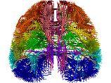 Frage und Antwort, Nr. 371: Kann unser Gehirn irgendwann voll sein?