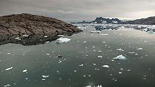 Luftaufnahme des Kangerdlusgssuaq-Fjordes in Ost-Grönland.