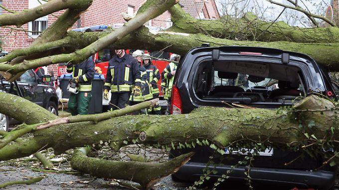 """Orkanböen bis 150 km/h: Sturmtief """"Niklas"""" fegt über Deutschland hinweg"""
