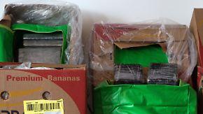 386 Kilo in Bananenkisten: Riesige Menge Kokain in Aldi-Supermärkten entdeckt