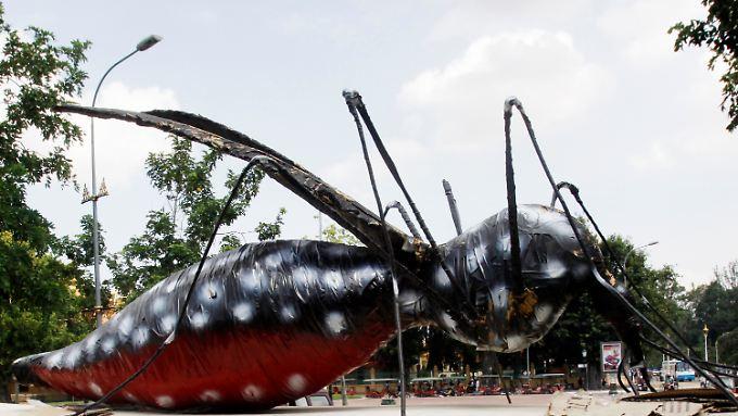 Gesundheitskampagne im kambodschanischen Phnom Penh: Riesiges Moskito, das Dengue symbolisieren soll.