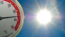 Schwitzen, stöhnen, Siesta halten: Der beste Umgang mit Hitze