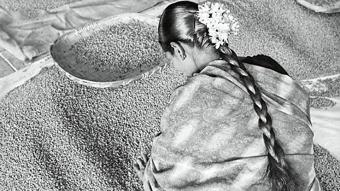 """Die Schönheit und Würde der Arbeit beim Kaffeeanbau hat Sebastião Salgado in seinem Bildband """"Duft der Träume"""" festgehalten. (im Bild: Selektion hochwertigen Kaffees für den Export, Allana Coffee Curing Works, Indien, Bundesstaat Karnataka, 2003)"""