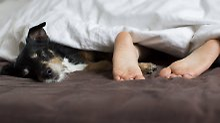 Gut ausgeruht in die Erkältungszeit: Wer wenig schläft, wird öfter krank