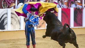 Kinder statt Corrida: Spanische Städte streichen Geld für Stierkampf
